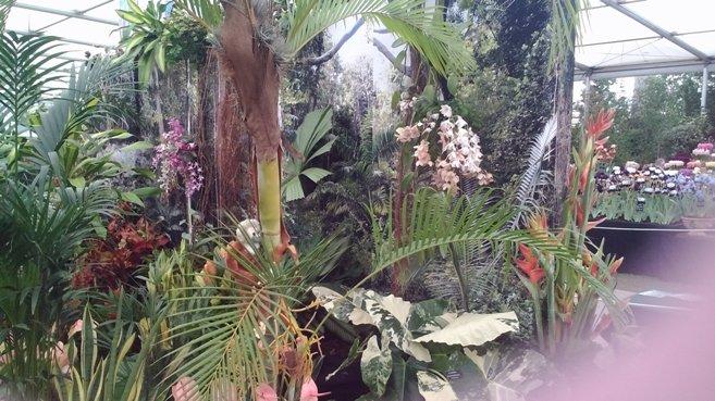 Open Garden Programme