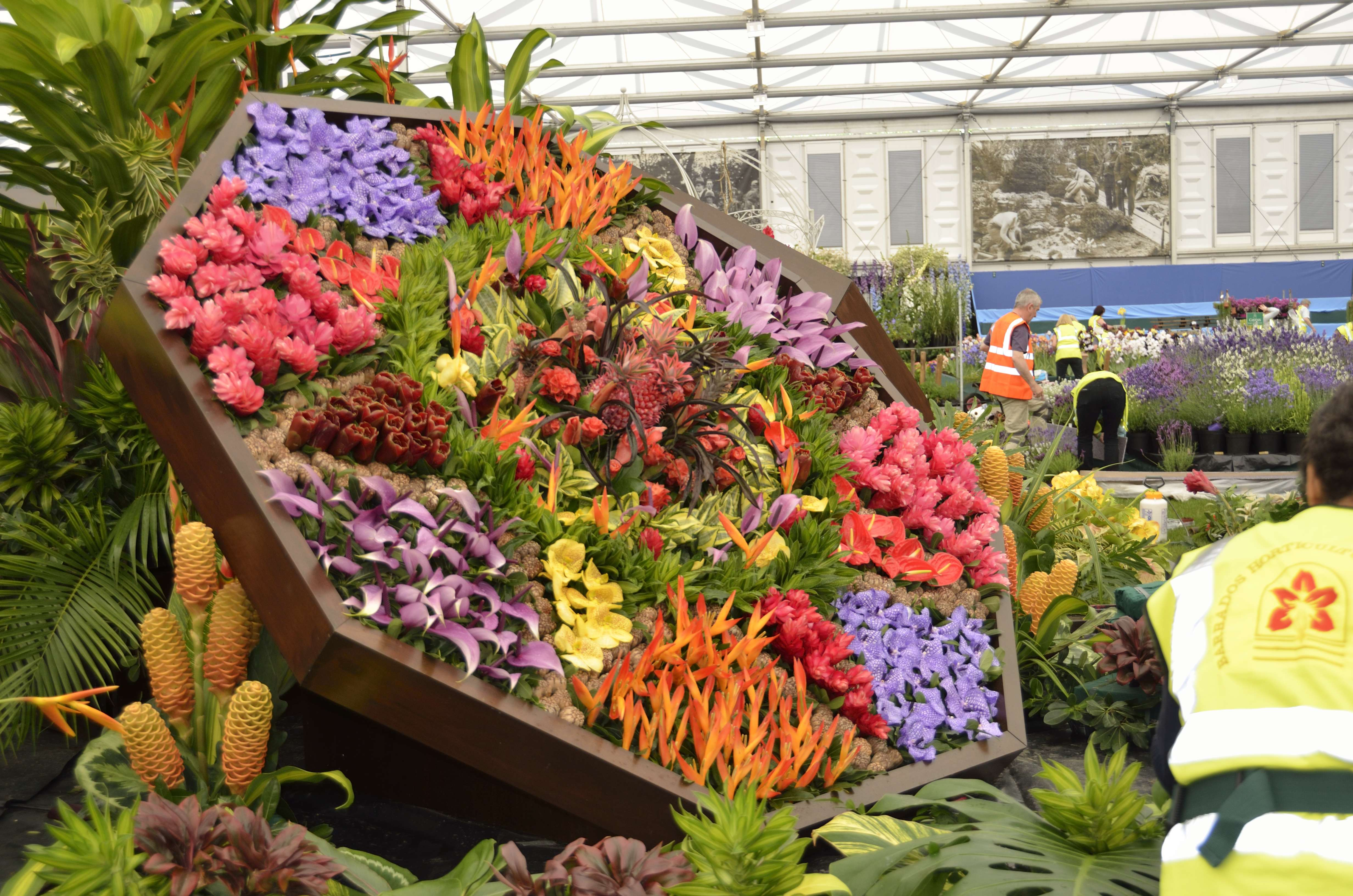 Chelsea Flower Show Gallery