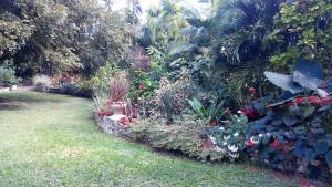 Garden of Jenny Marshall - Lower Greys