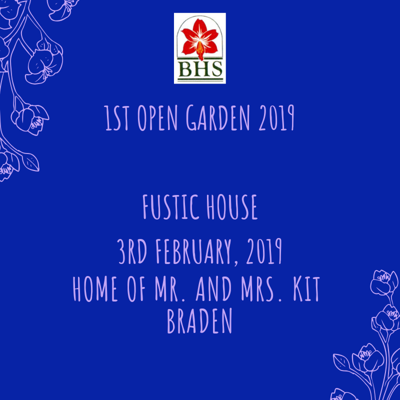 Fustic House Open Garden